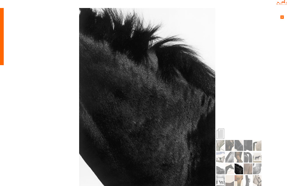 La Cavalière masquée | Koto Bolofo for Les ailes d'Hermès