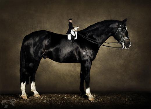 Danielle Skerman: Australian Professional Photography ...