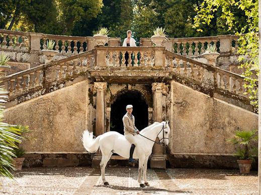 hm-we-love-horses-23