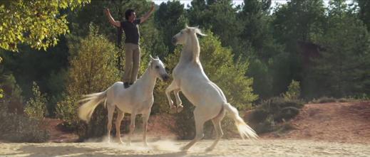 2012-ba-gazelle-jean-francois-pignon-04