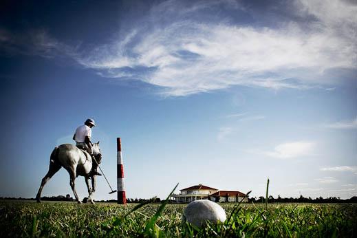 sebastiano-vitale-the-raw-horseproject-2