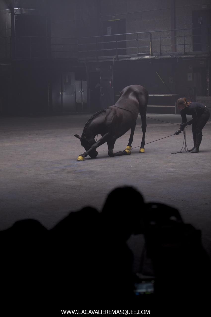 www.lacavalieremasquee.com |La Cavalière masquée dans les coulisses de la pub OPI avec Mario Luraschi pour Sports Equestres