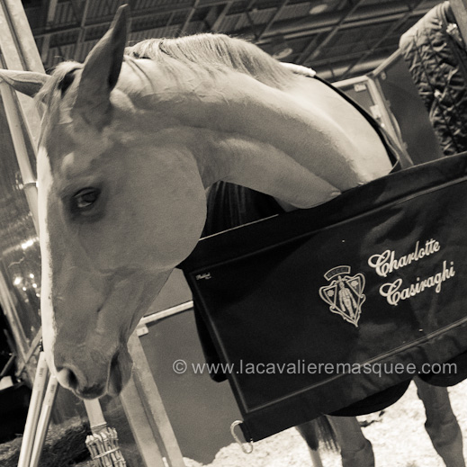 La Cavalière masquée, partner of the Gucci Paris Masters w/ Charlotte Casiraghi's horse