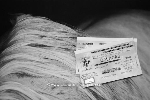 www.lacavalieremasquee.com / Bartabas: Calacas
