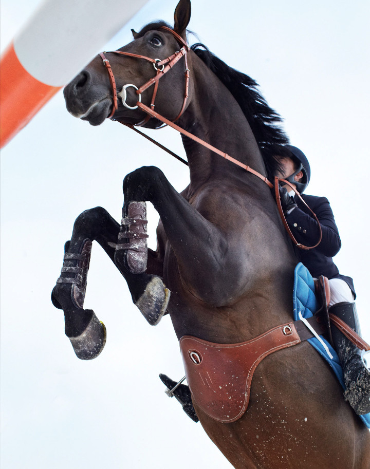 www.lacavalieremasquee.com | Giampaolo Vimercati for the Hermès Equestrian Catalogue