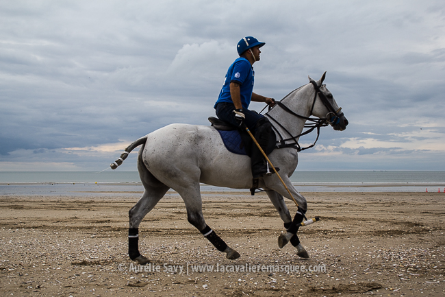 www.lacavalieremasquee.com   Horse x Deauville