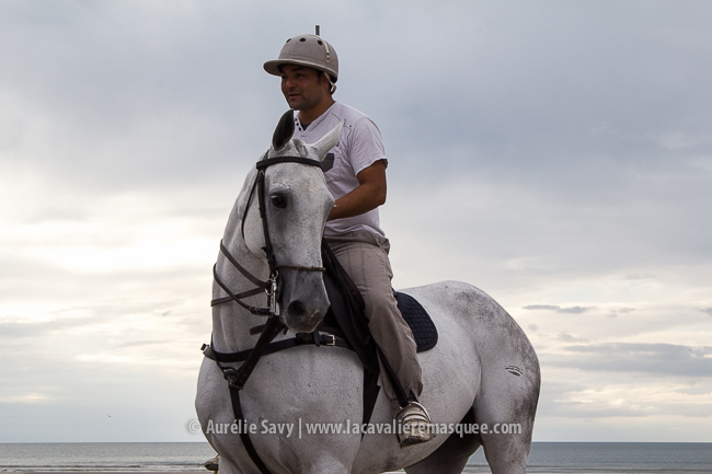 www.lacavalieremasquee.com | Horse x Deauville