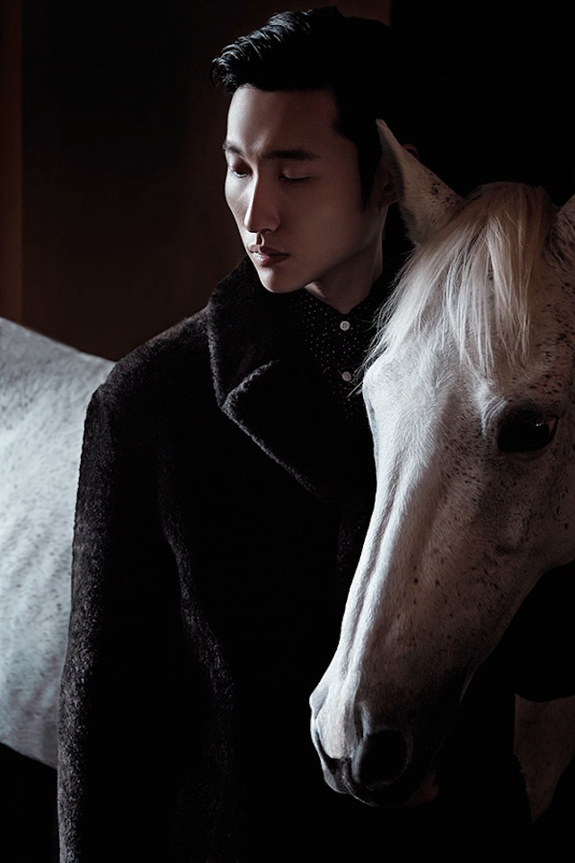 www.lacavalieremasquee.com | China-Life-Photography-Horse-Year4