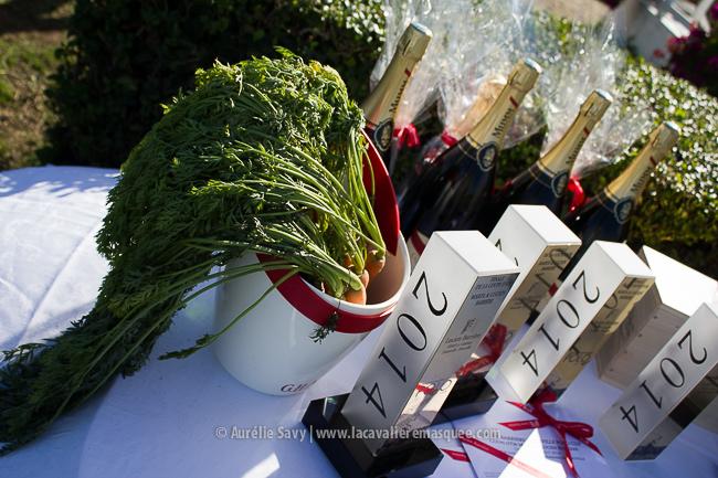 www.lacavalieremasquee.com | Finale de polo Coupe d'Or Deauville 2014