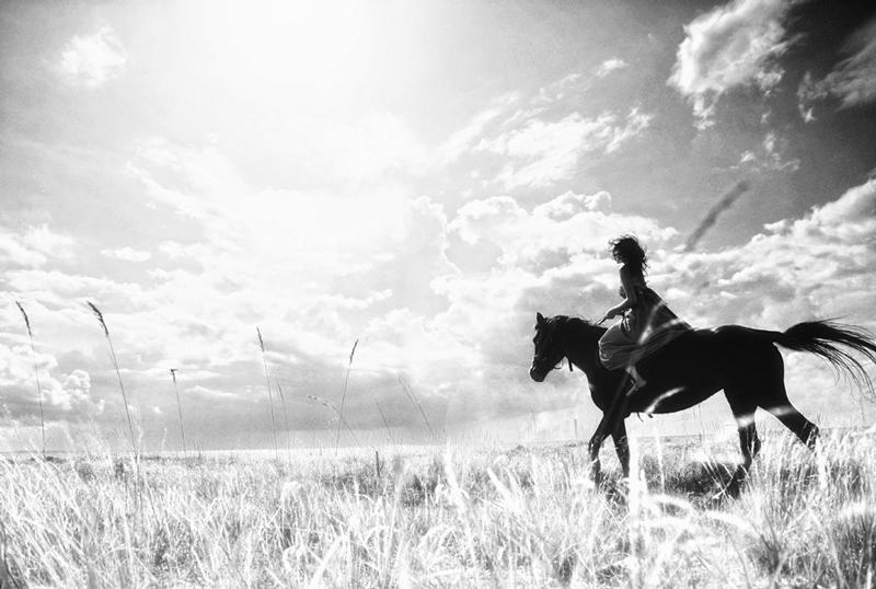 www.lacavalieremasquee.com | Horse, Cheval, Cavallo, Caballo, Pferd by Arseniy Semyonov