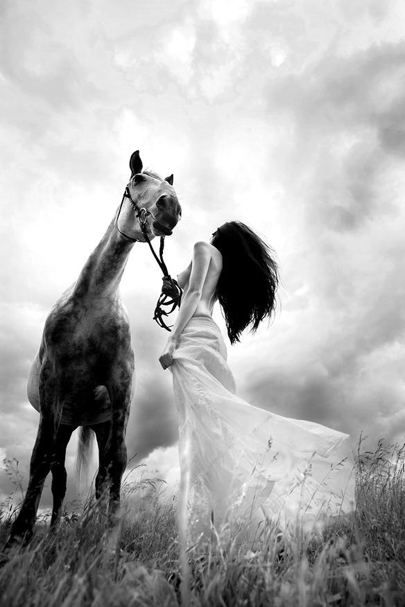 www.lacavalieremasquee.com | Horse by Sergey Zaytsev