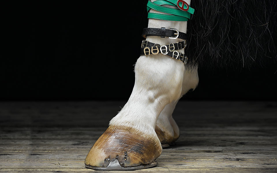 www.lacavalieremasquee.com | 'Precious Pieces' by Wolf-Dieter Boettcher for Equistyle Magazine