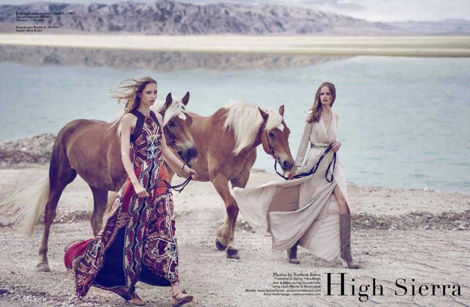 www.lacavalieremasquee.com | Norbert Bäres for Equistyle Magazine July 2015: High Sierra