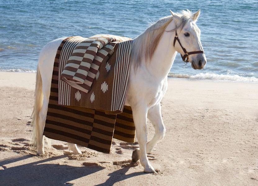 www.lacavalieremasquee.com |Ralph Lauren Home